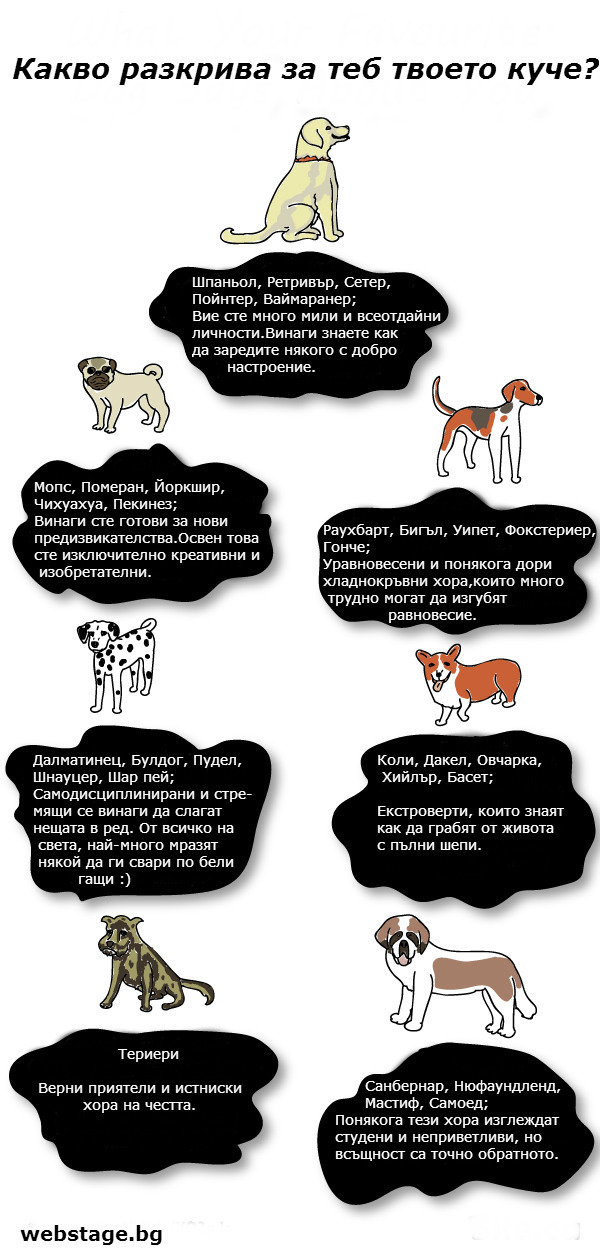 what-your-dog-says-about-you123