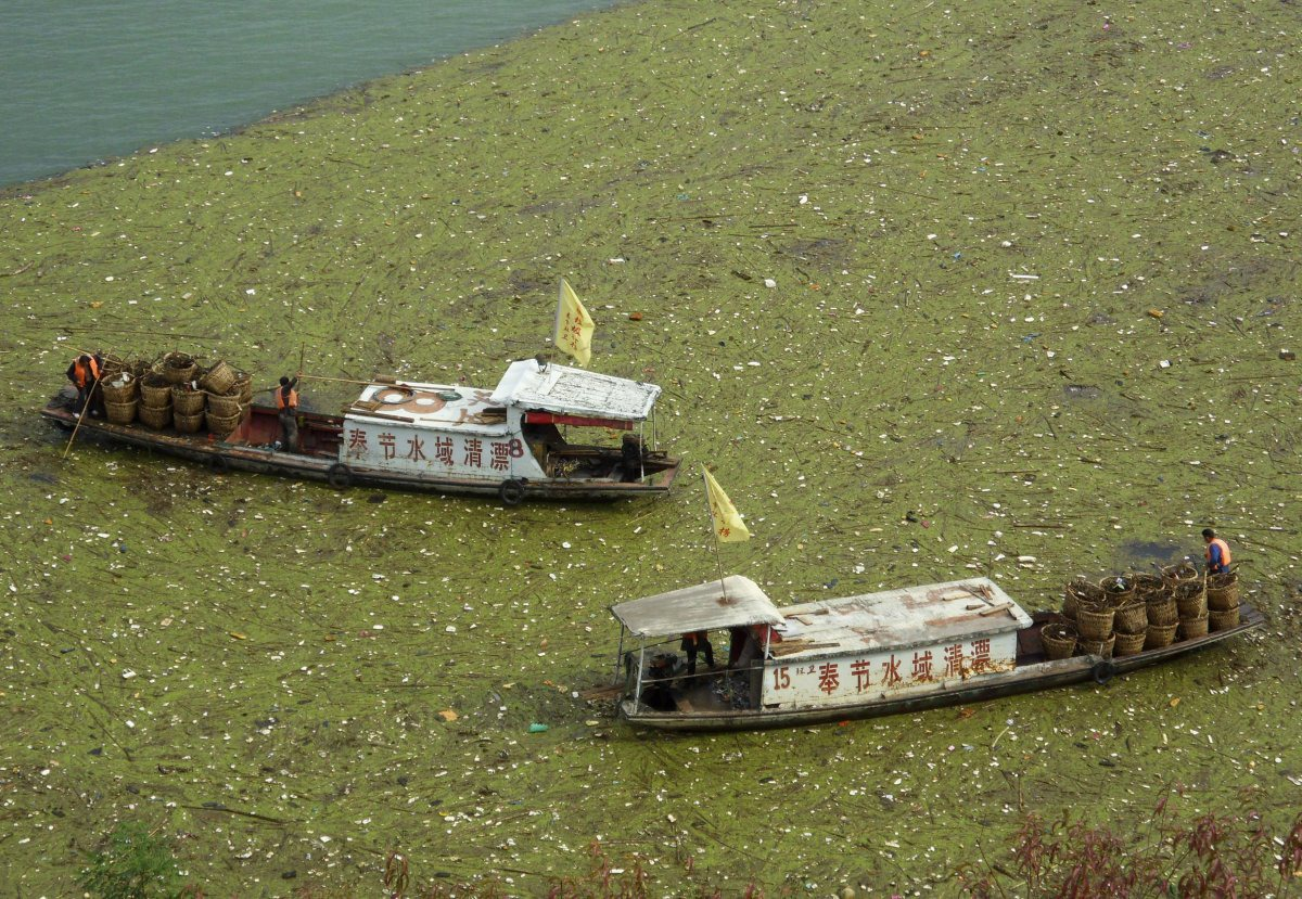 workers-clean-up-floating-garbage-on-the-yangtze-river-near-the-three-gorges-reservoir-in-november-2009