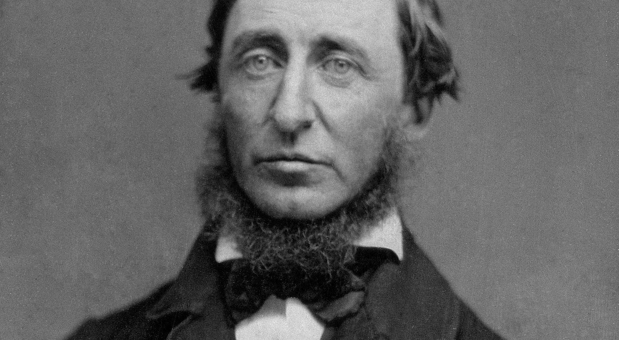 Original henry david thoreau 01