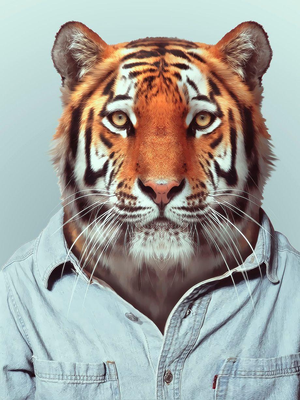 Фото на аву животные человек